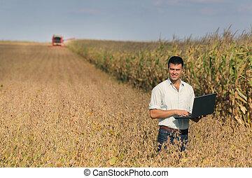 homem laptop, em, soja, campo
