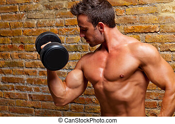 homem músculo, dado forma, pesos, tijolo, corporal, parede