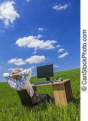 homem negócio, homem negócios, trabalhando, escrivaninha, campo verde