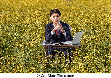 homem negócios, asiático, trabalhando