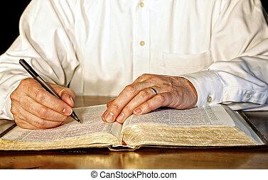 homem negócios, bíblia, estudar