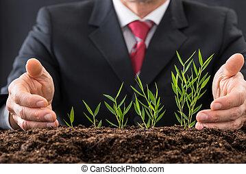 homem negócios, protegendo, plantas