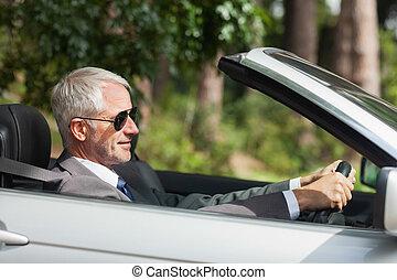 homem negócios, relaxado, dirigindo, cabriolé, classy