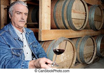 homem, provando, vinho, em, adega