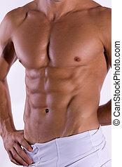 homem, torso