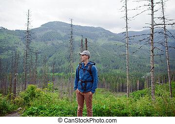 homem, turista, em, montanha, rastro