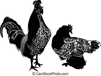 homemade agricultural bird rooster
