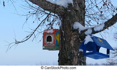 Homemade bird feeders on a tree in the snow
