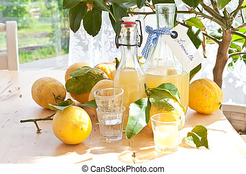 Homemade Limoncello - Homemade limoncello made from ripe...