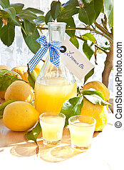 Homemade Limoncello - Homemade limoncello made from ripe...