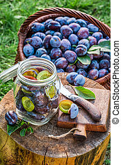 Homemade pickled plums in the jar