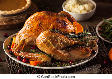 Homemade Roasted Thanksgiving Day Turkey