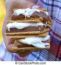 Homemade Smores with Marshmallows, Chocolate and Graham Crackers