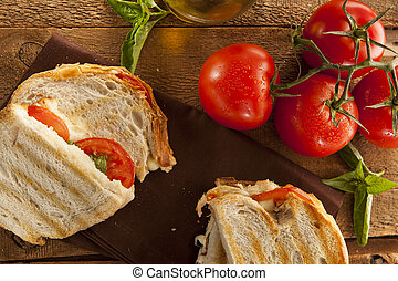 Homemade Tomato and Mozzarella Panini with Basil