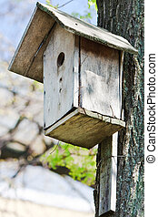 Homemade wooden bird house in spring