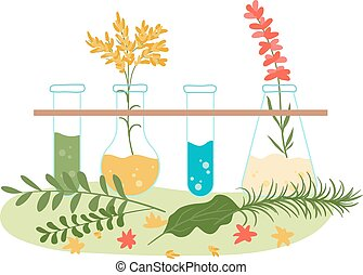 Homeopathy and natural herbal treatment, naturopathic health herbs extracts collection isolated on white flat vector illustration. Herbs, medical flower and homeopathic substances, treatment in flask.