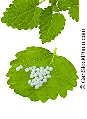 Homeopathy. Globules as alternative medicine