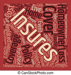 Homeowners Insurance Word Cloud Concept Text Background