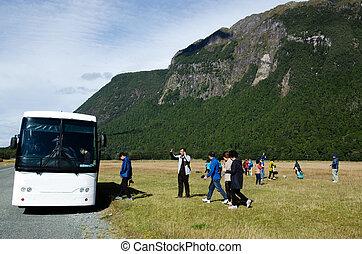 homer, túnel, fiordland, -