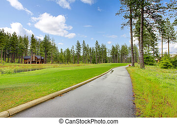 homes., or, cours, pin, piste, arbres
