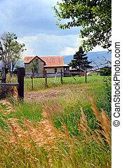 Homestead - Wood frame homestead is tin roofed, and peeling...