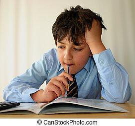 Homework again ! - Schoolboy doing his studies, white...