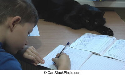 Homework, - boy does his homework and the cat is watching