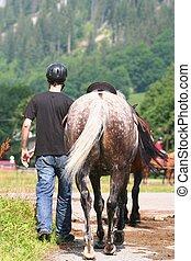 homme, à, cheval