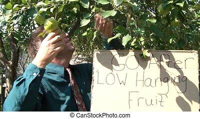 homme affaires, fruit, bas, pendre