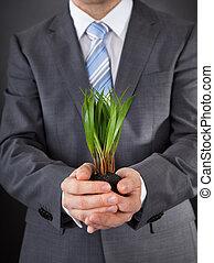 homme affaires, herbe, vert