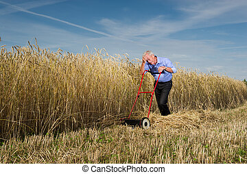 homme affaires, pelouse, sien, faucheur
