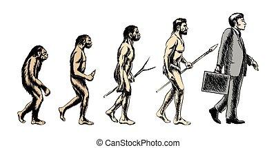 homme affaires, vecteur, illustration, évolution