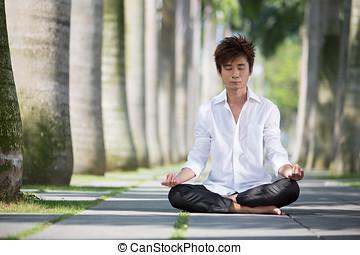 homme, asiatique, meditating., business