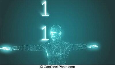 homme, binaire, graphique, vitruvian