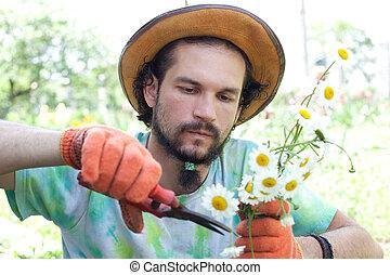 homme, bouquet, camomile, découpage