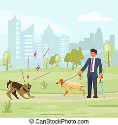 homme, chien, promenades