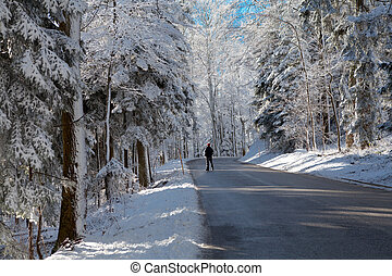 homme, forêt, route, neigeux