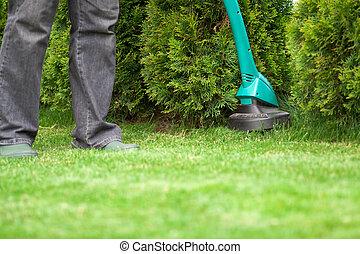 homme, herbe pelouse, chevêtre, fauchage