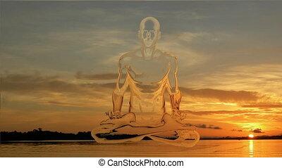 homme, méditation, coucher soleil, yoga