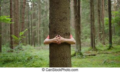 homme, mains, nature, fort, arbre, étreint, conservation ...