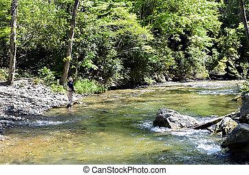 homme, pêche mouche, sur, rivière