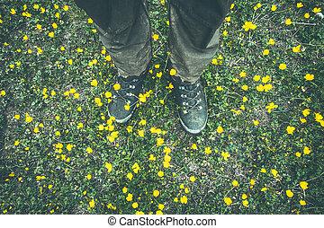 homme, pieds, trekking, bottes, marche