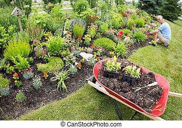 landscaping jardin debout usines pelouse parterre image de stock recherchez photos et. Black Bedroom Furniture Sets. Home Design Ideas
