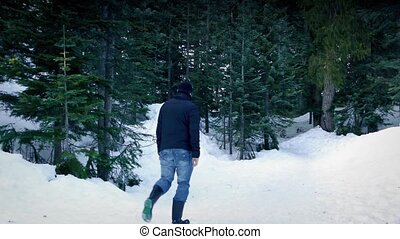 homme, promenades, dans, neigeux, hiver, bois