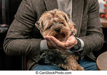 homme, sien, chien, tenant mains