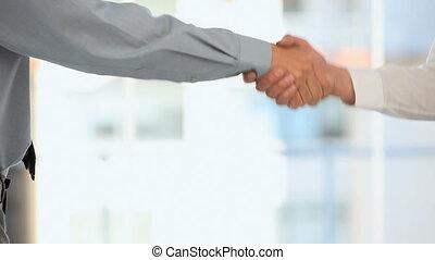 hommes affaires, mains secouer, deux