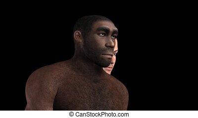 Homo Erectus Animation
