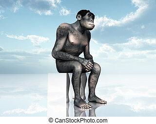 homo, habilis, -, human, evolução
