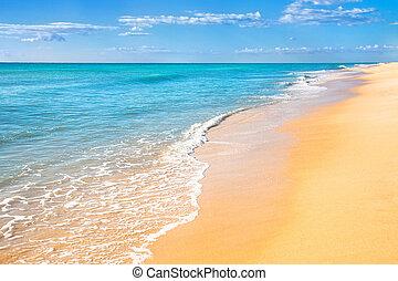 homok tengerpart, víz, háttér