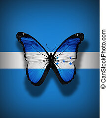 Honduran flag butterfly, isolated on flag background
